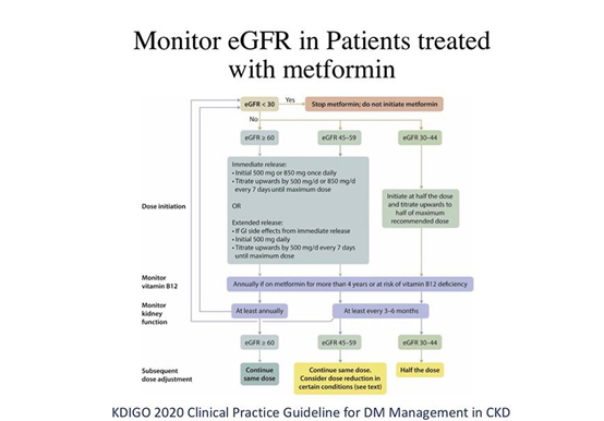 Monitor eGFR in Patients Treated with Metformin